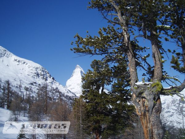 Heli & Ride Days Matterhorn Cervinia-Zermatt I
